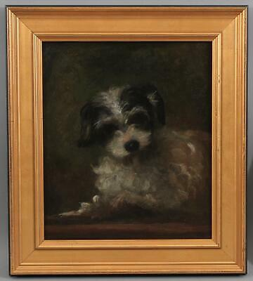 Small 19thC Antique Signed American SHIH TZU Puppy Dog Portrait Oil Painting
