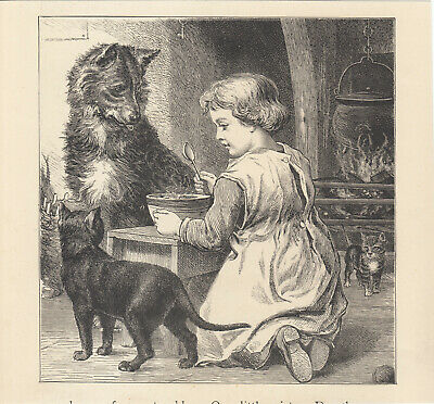Little Girl With Cat Kitten Dog Victorian Pets Antique Print 1887