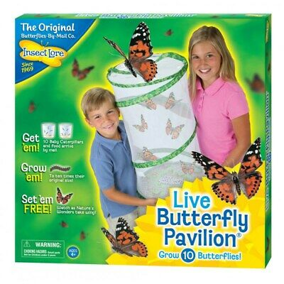 Live Butterfly Pavilion- butterfly & Insect Observation Habitat by Insect Lore