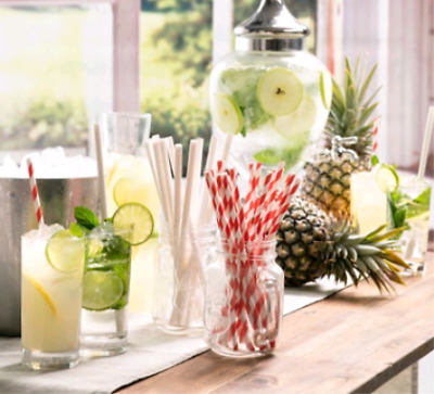 250 Straws Paper White Cocktail