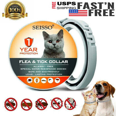DEWEL Flea Tick Collar Anti Flea & Tick Insect for Small Medium CAT Dog 1 Year
