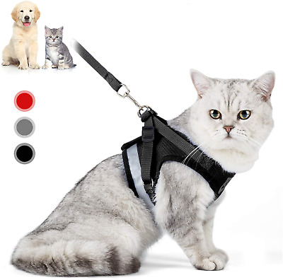 Cat Harness And Leash Escape Proof Safety Adjustable Jackets Harnesses 1.5m Stra