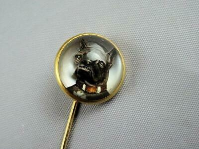 Antique Victorian Essex Crystal Glass French Bulldog 14k Gold Stick Pin