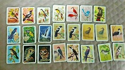 KINKARA TEA~AUSTRALIAN BIRD STUDIES COLLECTOR CARDS  x 23