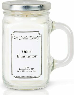 Citrus Odor Smoke Remover 6 oz jar candle by The Candle Daddy 40 plus hour burn