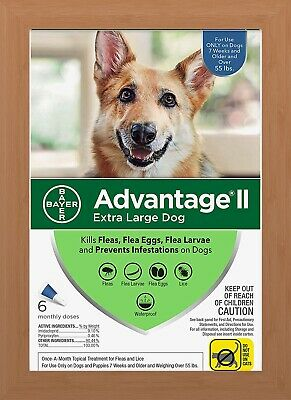 Bayer Advantage II Flea Treatment for Extra Large Dogs Over 55 lbs - 6 Pack