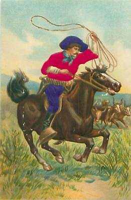 Cowboy Silk Applique Clothing Galloping Horse & Lasso Roping Embossed Postcard