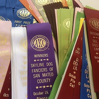 Lot of 100+ Assorted Dog Show Ribbons - American Kennel Club