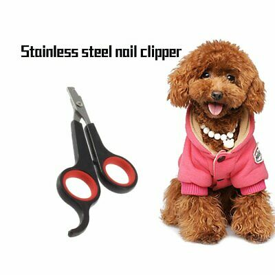 Pet Nail Clippers Dog Cat Rabbit Bird Guinea Pig Easy Claw Trimmers Scissors DR
