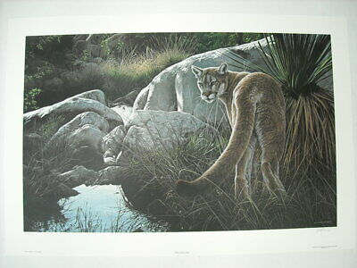 Ron Parker Creekside Cougar Mountain Lion Signed Limited Edition Art Print