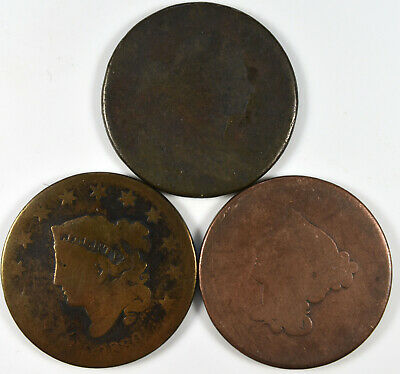 Large Cent Lot of Three No Date Coins