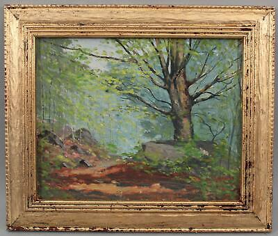 Antique HAROLD SAXTON BURR, Old Lyme, Beech Tree Landscape Oil Painting