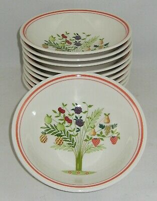 "Villeroy & Boch  BON APPETIT ""SET OF 10 CEREAL BOWLS"" New / Never Used"