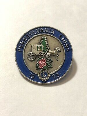 NEW Lions Club Wilderness Camp For Deaf Children CAL NEV MD-4 Hiking Pin Button