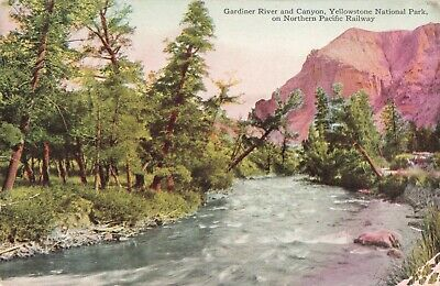 Postcard Gardiner River and Canyon Yellowstone National Park