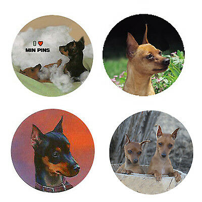 Miniature Pinscher Magnets :4 Min Pins 4 your Fridge or Collection-A Great Gift