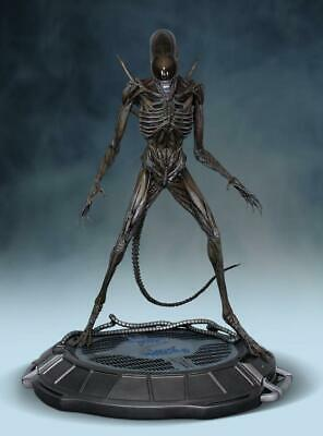 Alien Covenant 1:4 Scale Xenomorph Statue By Hcg, Brand New, Free Shipping!