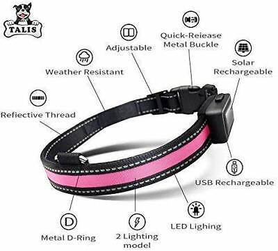 LED Light Up Dog Pet Collar Solar Charging & USB Rechargeable Glow Night Safety