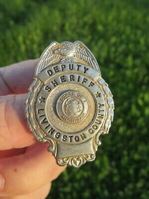 Vintage Michigan State LIVINGSTON COUNTY DEPUTY SHERIFF Pin Back BADGE Obsolete!