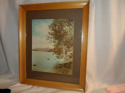 wood frame, Mountain lake with aspen, 10 by 12.5 in. ,No. 1291