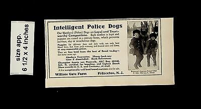 1925 Intelligent Police Dogs Willow Gate Farms Vintage Print ad 014982