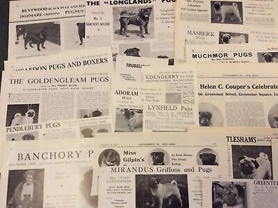 Pug Kennel Breed Clippings