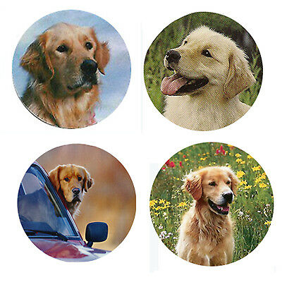 Golden Retriever Dog Magnets:   4 Cool Goldens for your Collection-A Great Gift