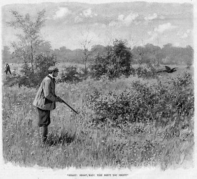 Pheasant Hunting By A. B. Frost Sportsman Shoot Man Why Don't You Shoot Hunt