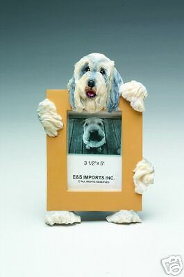 bearded collie picture frame  15-81