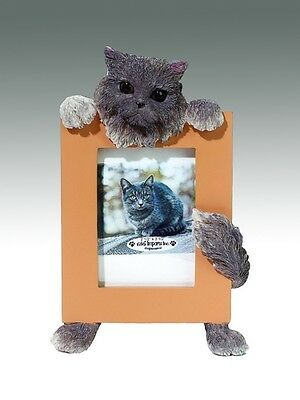 Persian Cat ~ Gray ~ Picture Frame 16-4A
