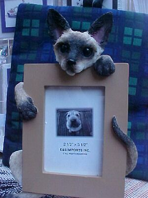 siamese cat    picture frame   16-7
