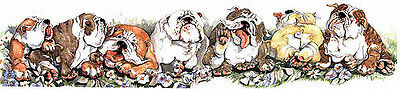 BULLDOG Ltd ED Dog Print by E. Groves