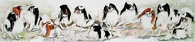 JAPANESE CHIN Ltd Ed  DOG Print by E.Groves
