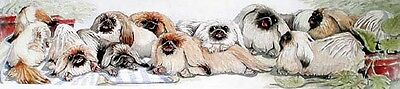 PEKINGESE   Ltd ED Dog Print by E. Groves