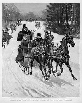 Horses Sleighing In Central Park During Wintertime Snow 1890 Whip Harness