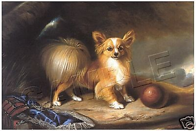 Victorian PAPILLION Vintage CANVAS Butterfly Dog ART