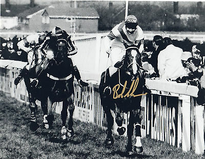 GRAND NATIONAL - ALDANITI 1981 in person signed 10x8