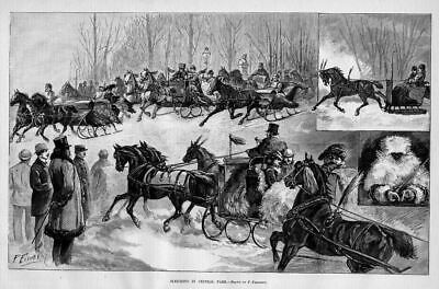 Horses, Sleighing In Central Park, Antique Sleigh Horse