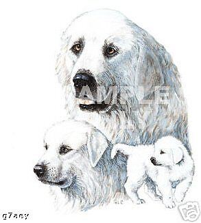 Great Pyrenees Mountain  Dogs On  A Tote Canvas Bag
