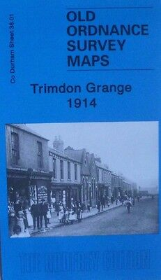 Old Ordnance Survey Map Trimdon Grange Co. Durham  1914 Godfrey Edition New