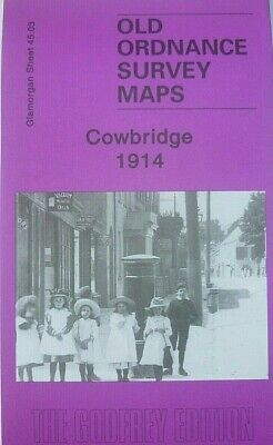 Old Ordnance Survey Map  Cowbridge Glamorgan  1914 Sheet 45.03 Brand New