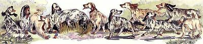 Enid Groves English Setter Print
