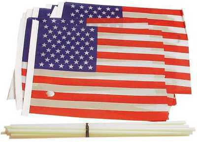 100 Dozen Flag Liquidation Deal (FLAGLQDDEAL)