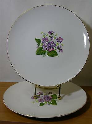SET OF 2 EDWIN KNOWLES DINNER PLATES WOOD VIOLETS