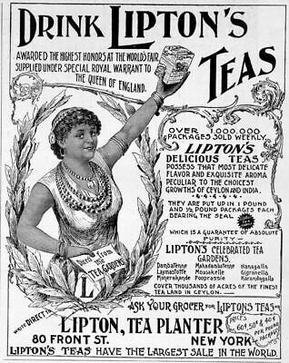 Lipton Tea 1895 Advertisement, Lipton Tea Planter, Teas
