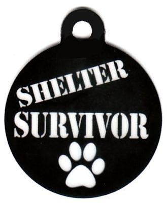 Engraved Pet ID Tag Shelter Survivor White Paw