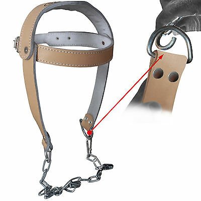 Real Leather Head Harness Dipping Neck Strength Fitness Dip With Chain