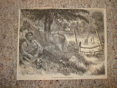 1869 Antique Print In Clover Horse Equestrian Country Superb Victorian Art Nr