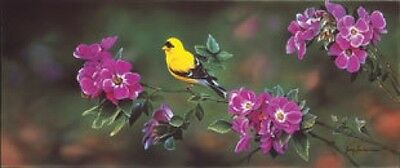 Jerry Gadamus The Color of Gold-S/N Goldfinch Print