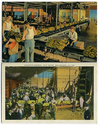 2Post Cards Unloading Bananas @ Wharf New Orleans